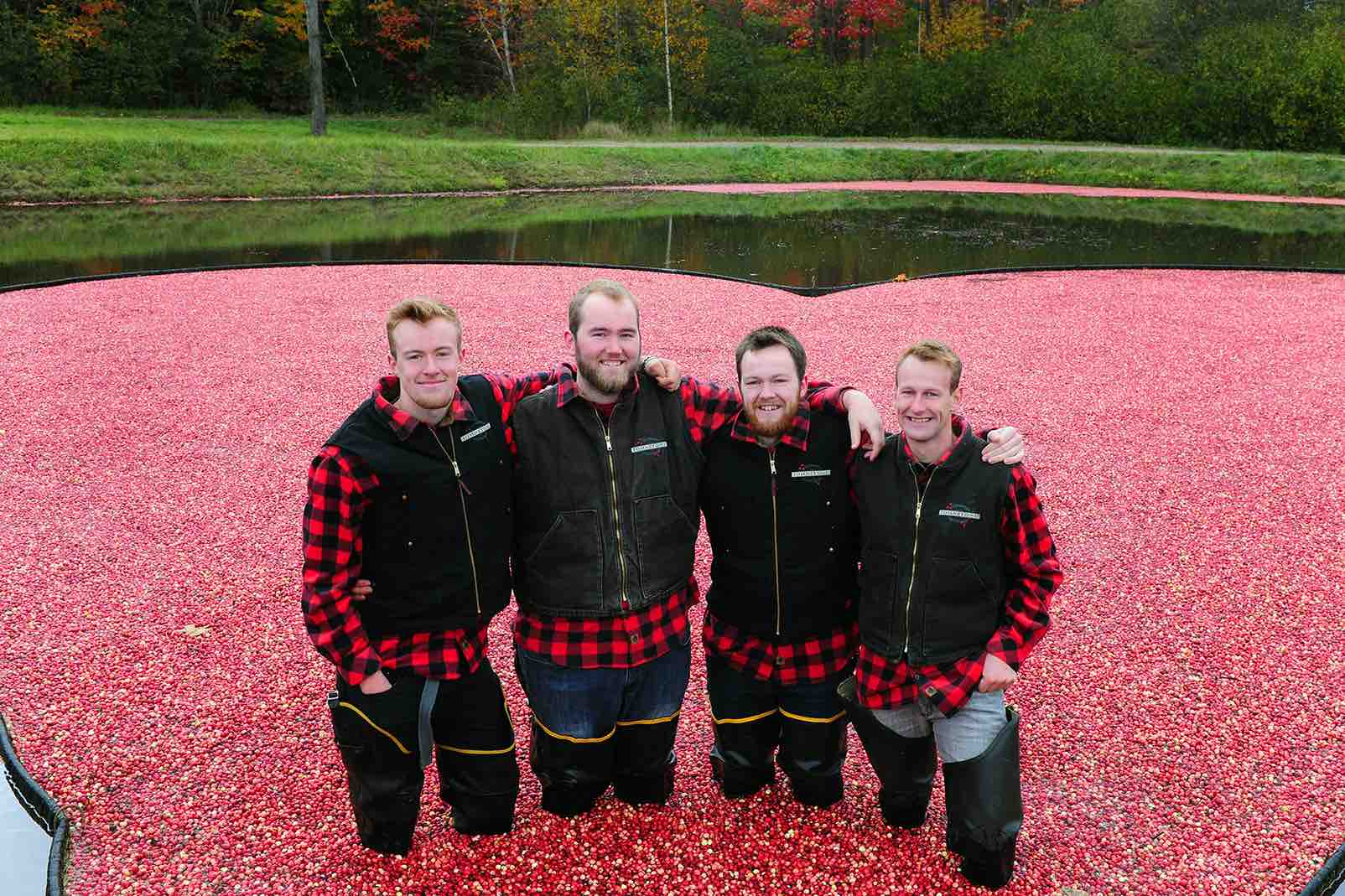 Johnston Cranberries four generations of souvenir shopping in Muskoka in cranberry field