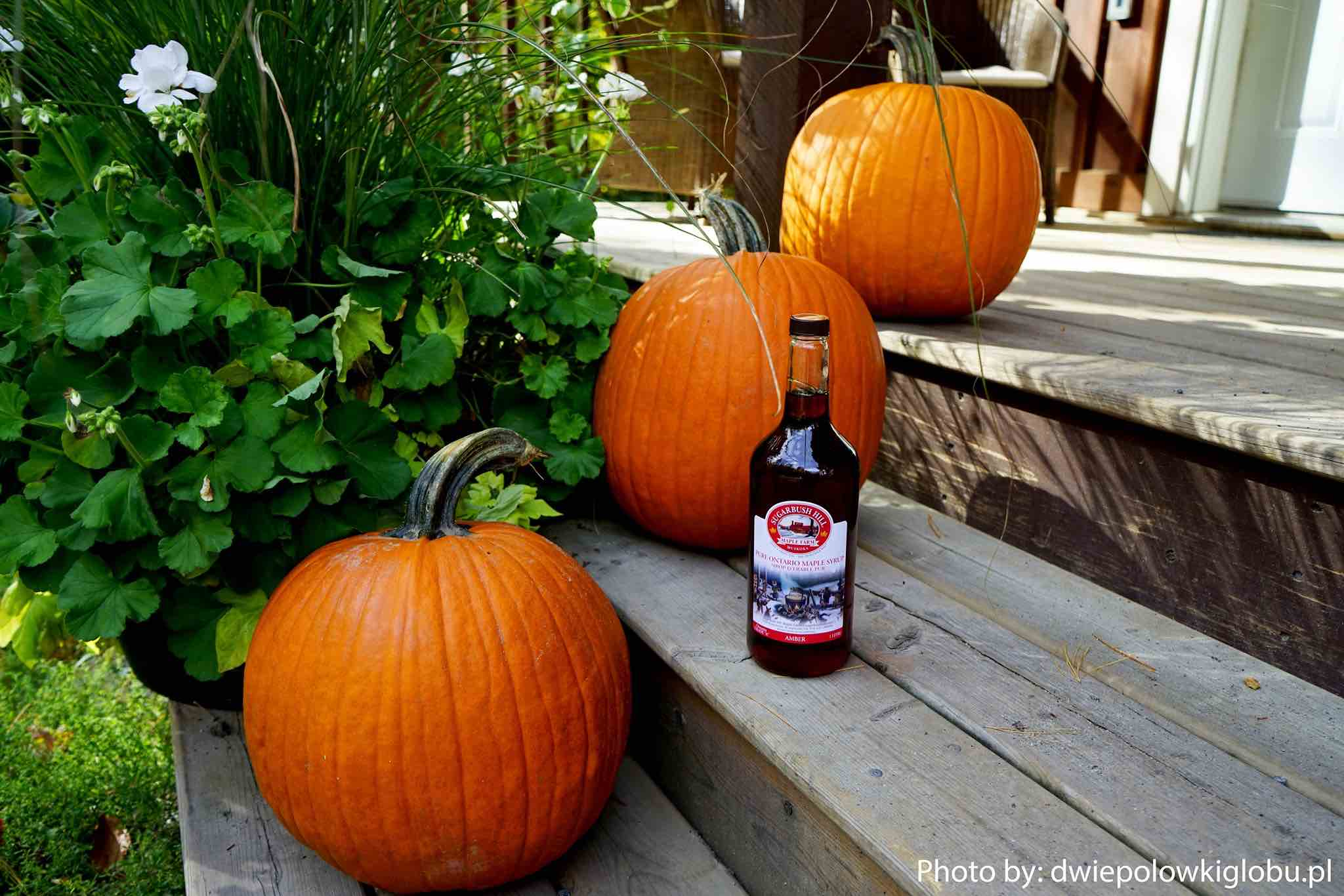 Sugarbush Hill Maple Syrup pumpkins and syrup bottle